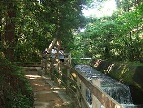対島川.JPG
