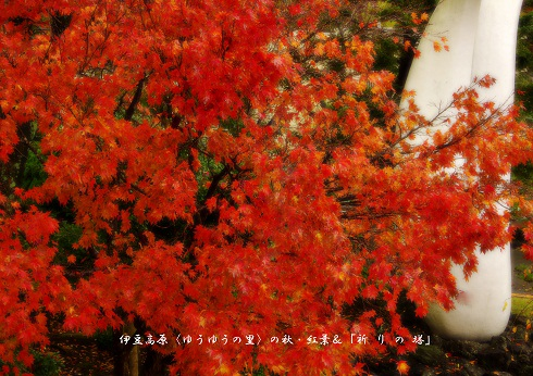 0-9 伊豆高原〈ゆうゆうの里〉の秋・紅葉&祈りの塔.jpg