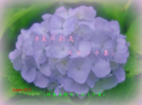 0-0-1 「夏の彩花・スケッチ集」 summer 2015.jpg