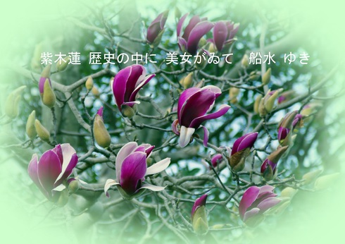 0-5.jpgのサムネール画像