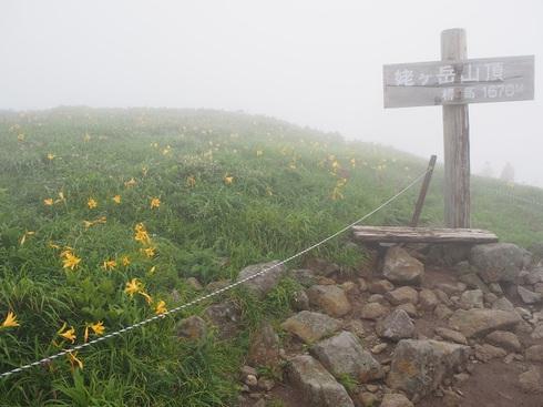 月山・姥ケ岳山頂とキスゲ.JPGのサムネール画像
