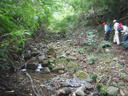 源流に沿って険しい山道を登ります.jpg