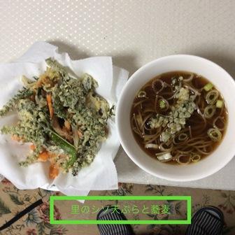 野菜と紫蘇の実の天ぷら蕎麦.jpg