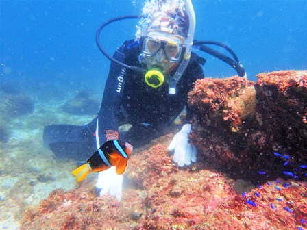 diving2019-3.JPG