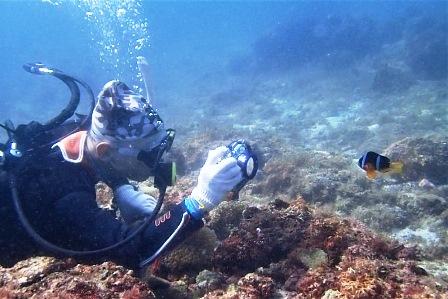 diving2019-4.jpg