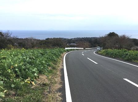 写真3・河津町見高付近からの相模灘.JPG