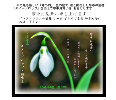 寒中見舞い!2019.1 大寒2019.01.26 (1).jpg