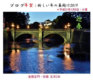 徳植様2019年明け (7).JPG