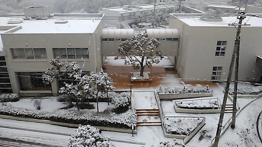 雪景色2021②.JPG