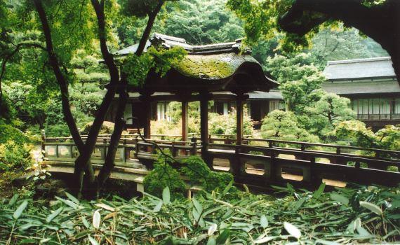 yanenoaruhashi2.JPG