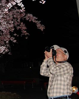 夜桜③.png