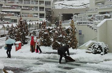 大雪2.png