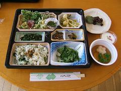 山菜摘み090420.JPG