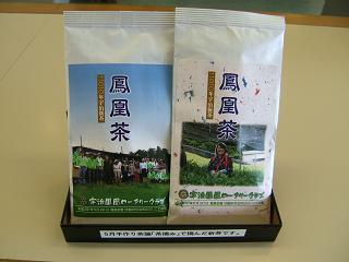 100606茶摘み④.JPG