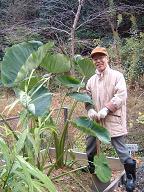 2011.12.1農園1.JPG