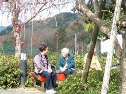 20110407桜茶屋2.JPG