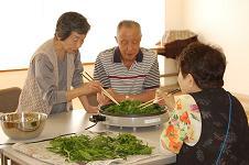 20110520茶摘み4.JPG
