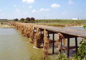 20110923流れ橋1.JPG