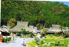20111125美山4.JPG