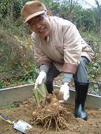 20111201農園3.JPG