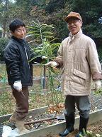 20111201農園4.JPG