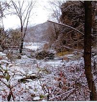 20120220雪景色2.JPG