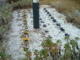 20130128雪景色.jpg