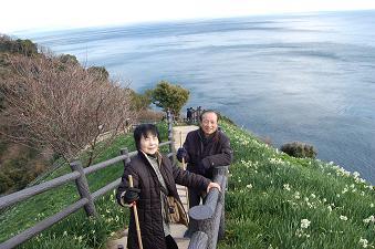 20130210灘黒岩水仙郷.JPG