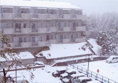 20140214大雪①.jpg