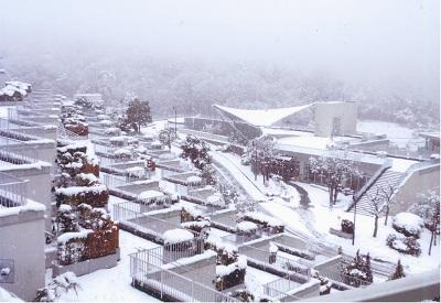 20140214大雪③.jpg