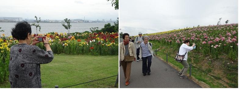 20150618ゆり園⑤.png