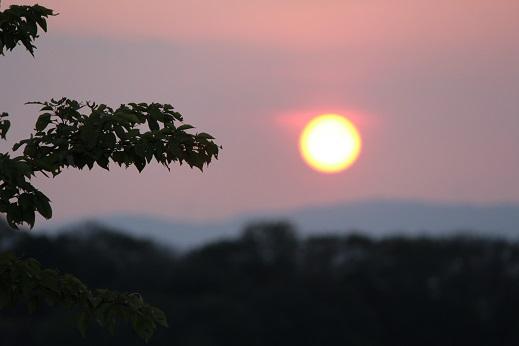7月の夕陽.jpg