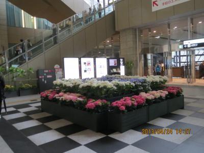 グランフロント大阪3.jpg
