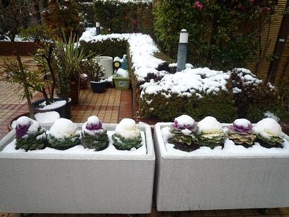 テラス雪2.jpg