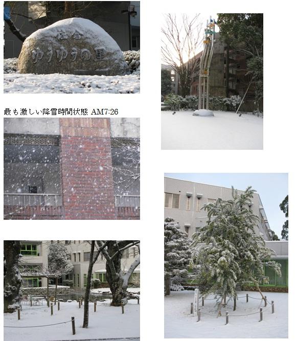 佐倉も雪01.jpg