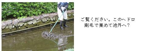 噴水掃除6.png