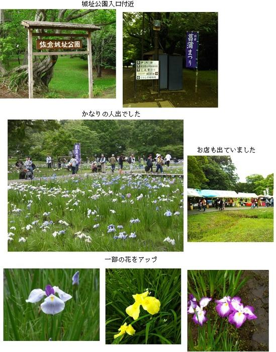 城址公園まとめ1.jpg