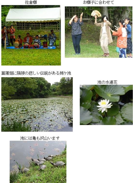 城址公園まとめ2.jpg