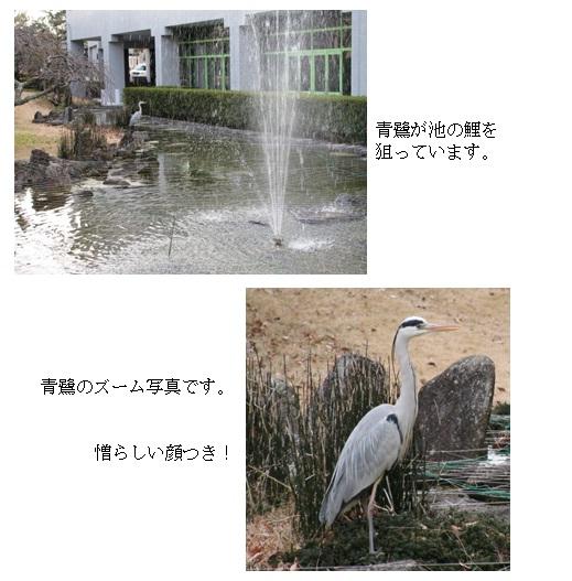 池のほとり01.jpg