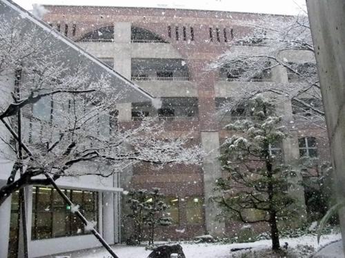 風雪2.JPG