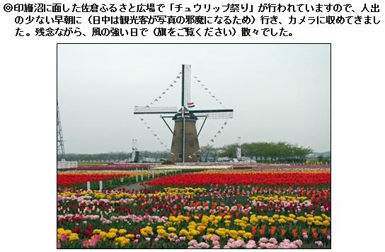 20130419_1.jpg