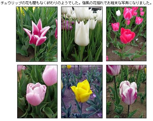 20130419_3.jpg