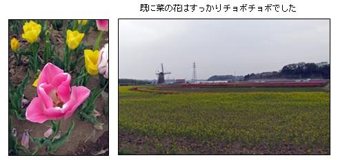 20130419_4.jpg