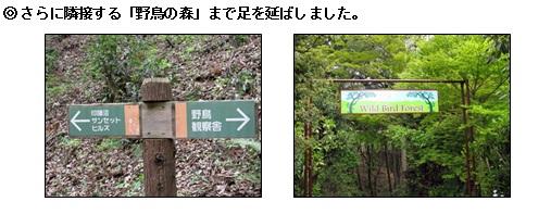 20130419_6.jpg