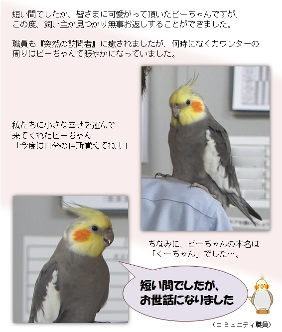 20150607_1.jpg