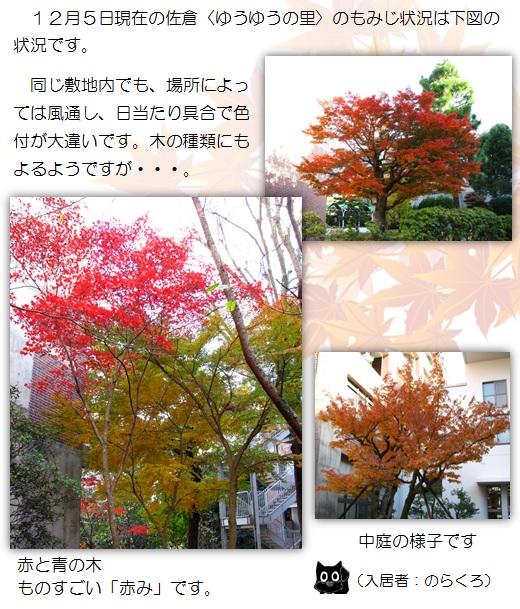 20151208_1.jpg