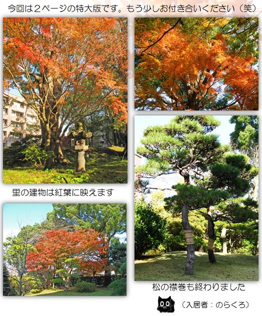 20151208_2.jpg