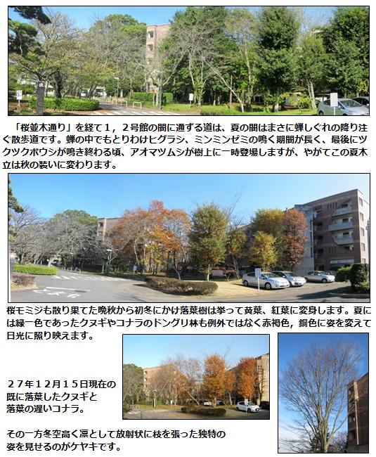 20151218_2.jpg