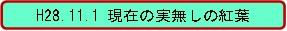 20161101_1.jpg