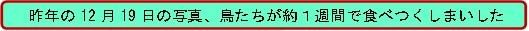 20161101_3.jpg